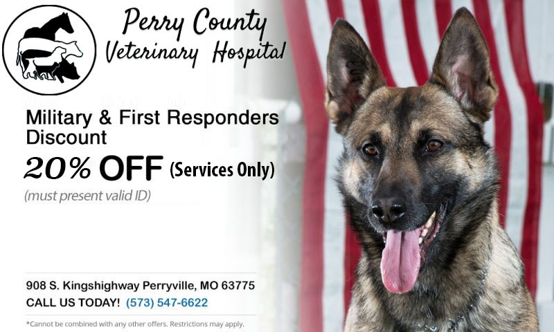 perry_county_vet_hospital_military_discount